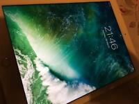 iPad Air 2 32 gb with Accessories - immaculate