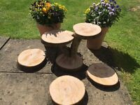** Wooden log slices, cupcake stand and cake stand for hire, perfect for weddings, rustic **