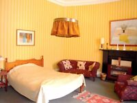 A Very Large Luxurious Double Room plus a Cozy Room for Only Two Week Stay