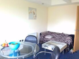 stunning 2 double bed apartment in west ham, the property is currently been redecorated though out