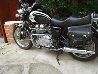 Triumph Bonneville T100. 2005