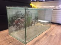 Large glass fish tank 2ft 6inch long