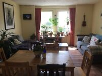 2 bed flat in Newington for rent from Aug 1 - 10