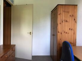 Single Room in young professionals house share
