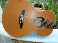 takamine g mini acoustic guitar.