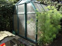 OASIS RION GREENHOUSE(2M X 1.5M)