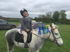 Dizzy 12 2 lead rein second ridden pony