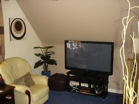 one bedroom flat Colchester for one bedroom flat near the coast