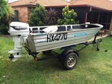 Seajay 3.7 (Tinny)  with 25Hp Johnson. Upper Coomera Gold Coast North Preview