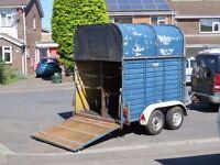 Rice Europa Horse Box trailer