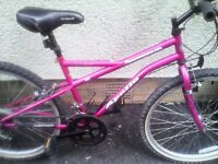 APOLLO LADIES MOUNTAIN BIKE,16 INCH FRAME,26 INCH WHEELS,18 GEARS,GOOD CONDITION.