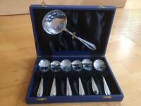 Chrome spoon set