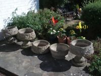 5 Lovely Large & Very Heavy Stone/Concrete Planters/Urns