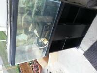 Free 30 gallon fish tank with stand