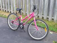 triumph mountain bike
