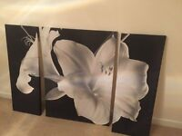 Set of three black and white wall canvases