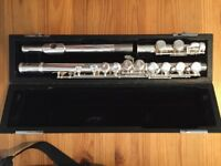 Trevor James 10x silver pearl flute