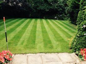 Gardening Services, Grass & Hedge cutting, Tidy Ups etc.