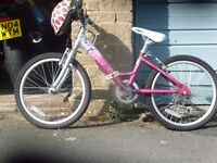 Raleigh Starz Little Girls Bike . Never used.