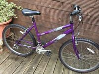 LADIES RALEIGH MOUNTAIN BIKE WITH 18 GEARS