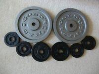 Gym cast iron Disc Weights 2 x 10kg, 2 x 2kg, 4 x 1kg