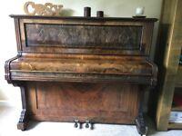 Mint instrument