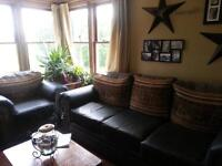 Cowboy couch and loveseat