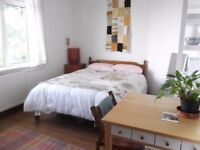En-suite double bedroom for a single person to rent in shared house