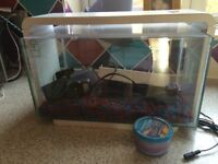 Superfish home25 fish tank