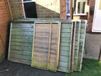 Fence panels 6ft by 4ft x4 and a bit,