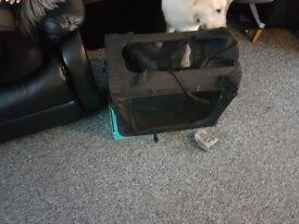 Travel dog create