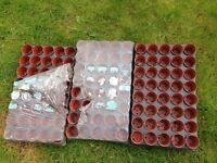 3 trays Plant Pots small 6 cm size new not been used packaging is soiled. Macclesfield area.