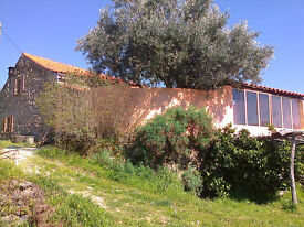 For sale: organic farm, granite stone farmhouse, separate annexe .3 acres.Fundao Central Portugal