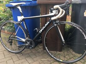 Dolan Tuono SL Road Bike -52cm frame - Full carbon - £750