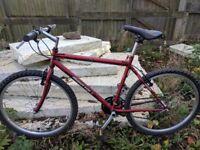 Muddy fox ranger (1990s retro mountain bike)