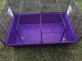 Purple Hamster Cage