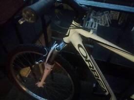 Orbea mountain bicycle