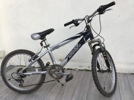 Ideal gift - Zombie kid's mountain bike