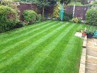 Garden maintenance service middlesbrough area