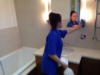 DOMESTIC CLEANER, IRONING, OFFICE CLEANING, CLEANING SERVICES IN LONDON