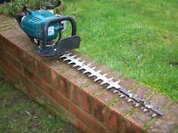 Draper Expert Hedge trimmer cutter