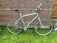 Gents/teenagers Raleigh Bicycle