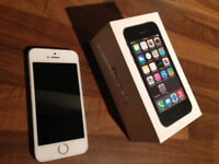 iPhone 5s Space Silver (unlocked)