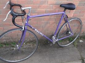 Pacific Racing Bike XXL