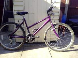Raelight woman's bike
