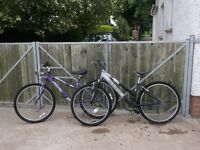 2 Teenage Girl Raliegh Bikes for sale.