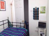 Sweet single box room, St Weburghs, £250p/m