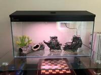 Fish Tank + Stand