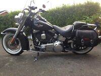 Harley softail deluxe 2007