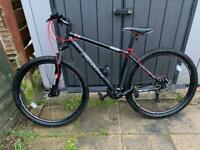 Falcon radon 29er mountain bike